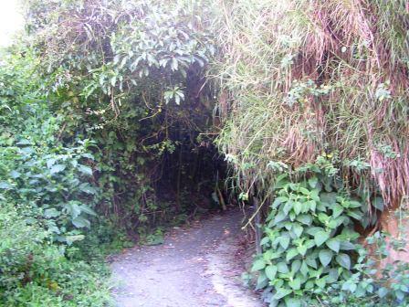 Hiking path around Baños Ecuador