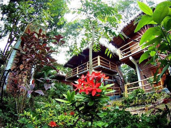 Bromelia Nature Lodge - Montanita Ecuador