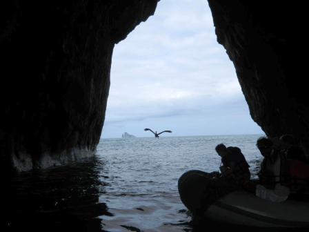 Galapagos Beauty