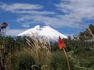 Cotopaxi Volcano on a clear day
