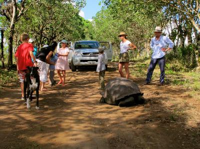 Land based safari holiday