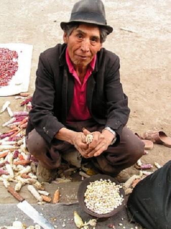 Ecuadorians tend to be hardworking people.