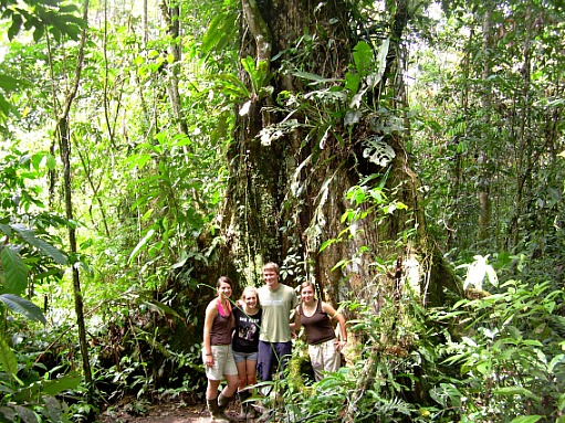 Pakay offers jungle tours